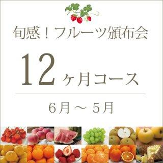 旬感!フルーツ頒布会12ヶ月コース(スタンダード) 6月〜5月