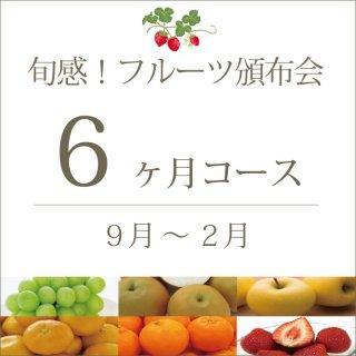 旬感!フルーツ頒布会6ヶ月コース(スタンダード)  9月〜2月