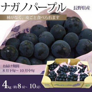 ナガノパープル 産地箱 約4kg(8〜10房)