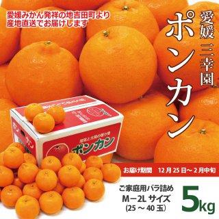 【1月・2月のお届け】愛媛・三幸園薬師寺さんのポンカン5kg