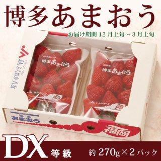 【送料無料】【ご自宅用・身近な方への贈り物に】博多あまおうDX(デラックス) 約270g×2パック