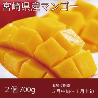 宮崎県産マンゴー 2Lサイズ 700g以上