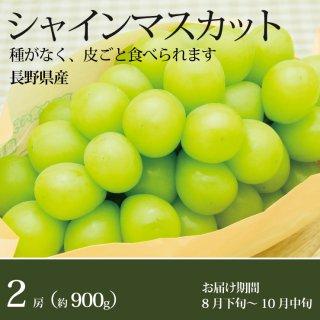 シャインマスカット2房(900g)長野県産