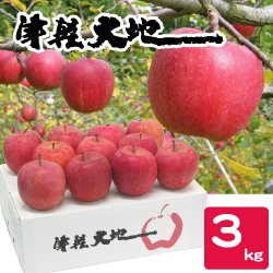 【送料無料】【12月のお届け】【お歳暮】青森・津軽大地乃会サンふじりんご3kg