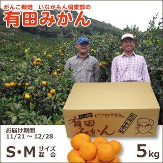 和歌山県産有田いなかもん倶楽部のがんこ栽培みかん S/Mサイズ混合 5kg
