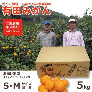 和歌山県産有田いなかもん倶楽部のがんこ栽培みかん(ご家庭用お買い得品) S/Mサイズ混合 5kg
