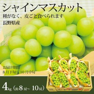 【送料込】シャインマスカット 産地箱4kg(8〜9房)