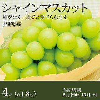 シャインマスカット4房(1.8kg)長野県産