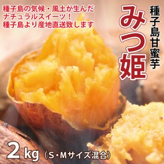 【送料無料】種子島甘蜜芋「みつ姫」2kg