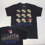 グレイトフルデッド Tシャツ EVOLUTION(M) 新品 【メール便可】
