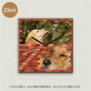 Brick (写真2点)