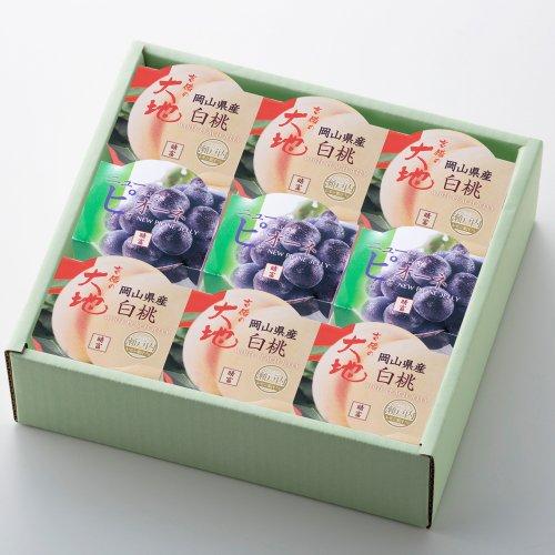 白桃ゼリー・ニューピオーネゼリーセット140g (9個入)