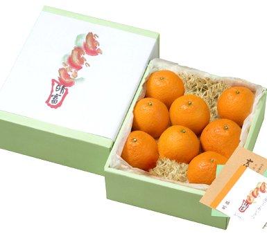 清見オレンジ(8玉)