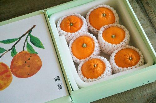 旬の柑橘詰め合わせ