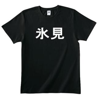 氷見Tシャツ