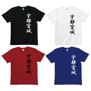 宇都宮城Tシャツ