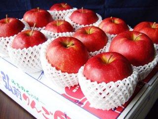 青森りんご ジョナゴールド【5kg】