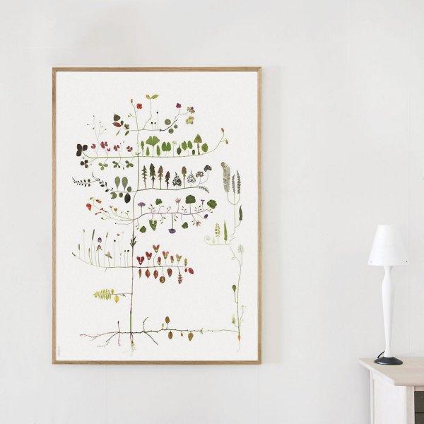 Poster Multi Tree 70×100cm