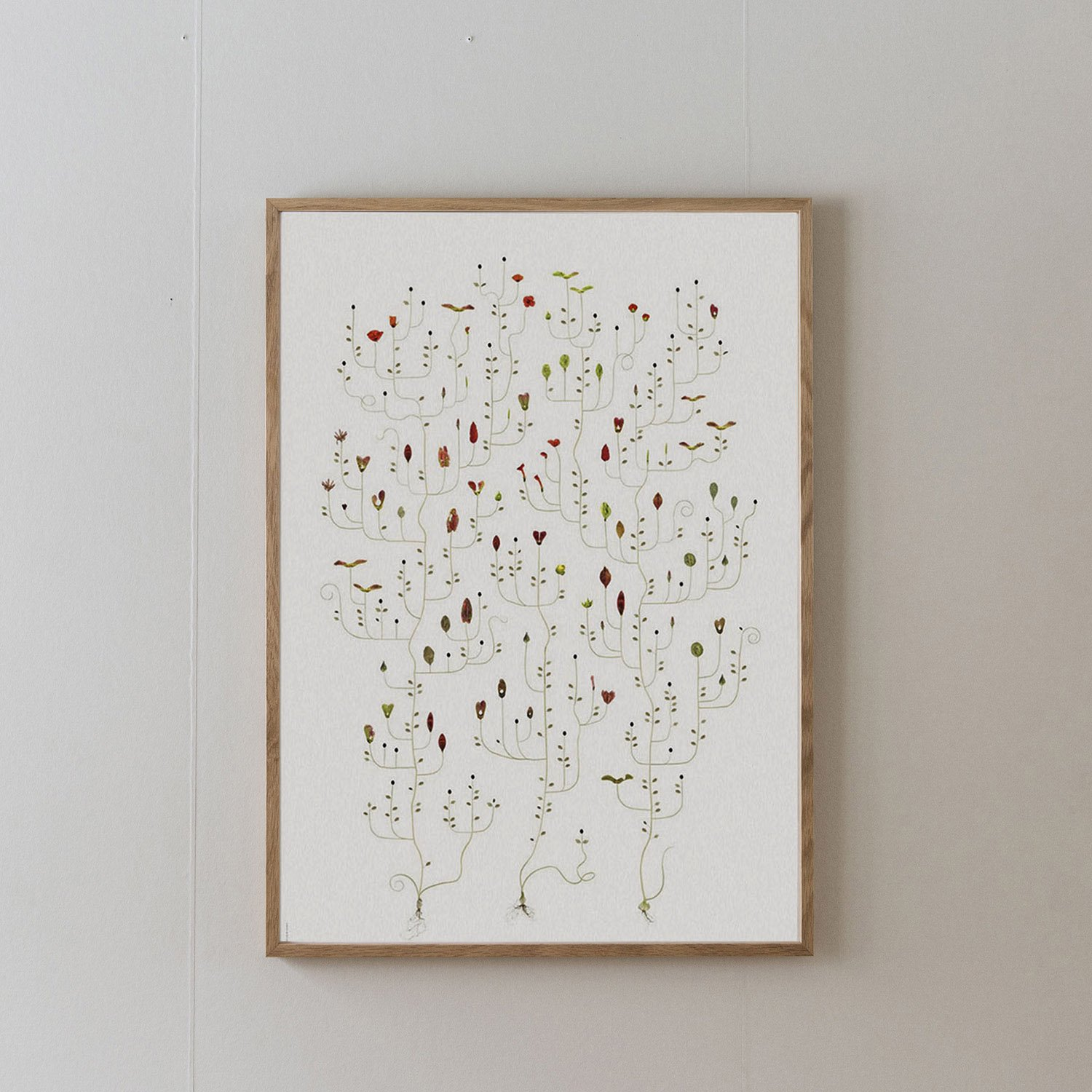 Poster Seed Tree 50×70cm