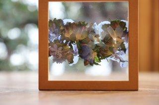 framed pressed flower 2021 Winter 2