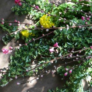【23区限定リトル宅急便】桃とコデマリと菜の花とワインのセット(お届け日は別途ご相談 / 枝もの便)