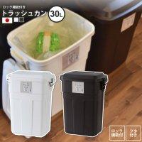 30リットル : ゴミ箱 おしゃれ ごみ箱 ダストボックス トラッシュカン LFS-934 BR/WH