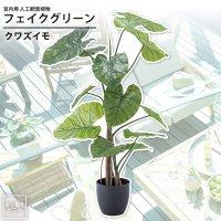 クワズイモ : フェイクグリーン 室内用 人工観葉植物 おしゃれ インテリアグリーン GRN-16 フェイクグリーン クワズイモ