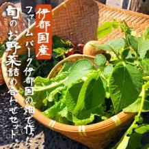 【福岡県糸島市】伊都国産 旬の野菜盛り合わせセット