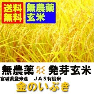 令和2年産 無農薬 楽々発芽玄米 金のいぶき 2kgx12袋 送料無料