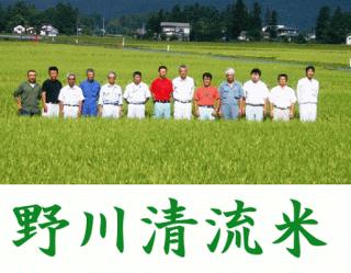 令和2年産 野川清流米6品種お試しセット