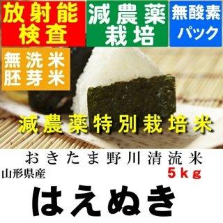 令和2年産 野川清流米 特別栽培米山形県産はえぬき 玄米5kg 精米・送料無料