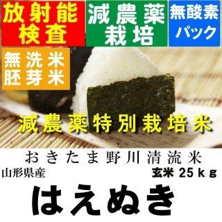 令和2年産 野川清流米 特別栽培米山形県産はえぬき 玄米25kg 精米・送料無料