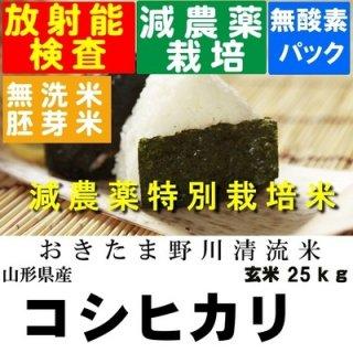 令和3年産 野川清流米特別栽培米 山形県産コシヒカリ 玄米25kg 精米・送料無料