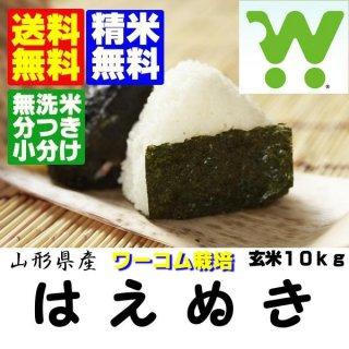 令和2年産 山辺アグリFFワーコム栽培米 山形県産はえぬき 玄米10kg 精米・送料無料