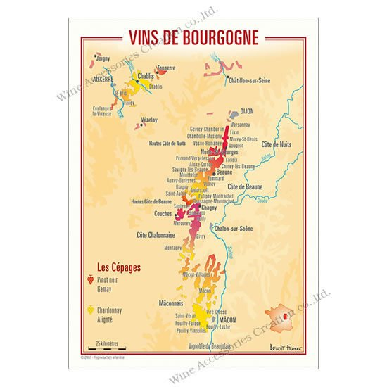 フランス製ワイン ポストカード[ブルゴーニュ]10枚セット  UV203PC