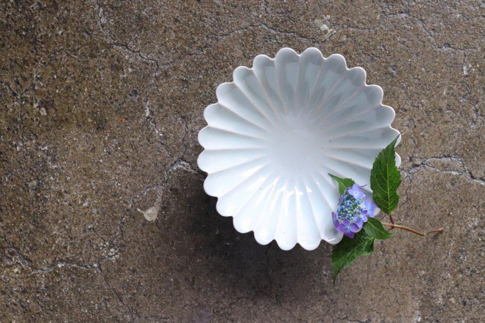 谷村崇 青白磁菊鉢