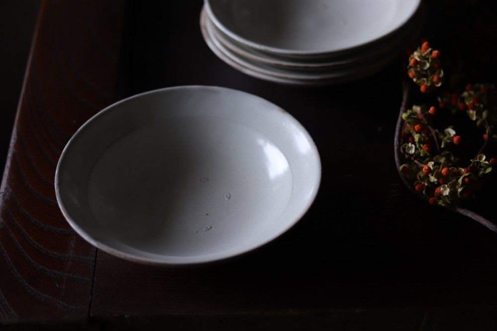 荒賀文成 粉引 リム5寸皿