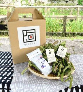 枝付き枝豆(1kg) 五島列島粗塩セット