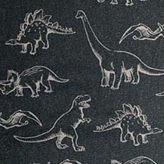 恐竜 Tip-top Collection|カーキー