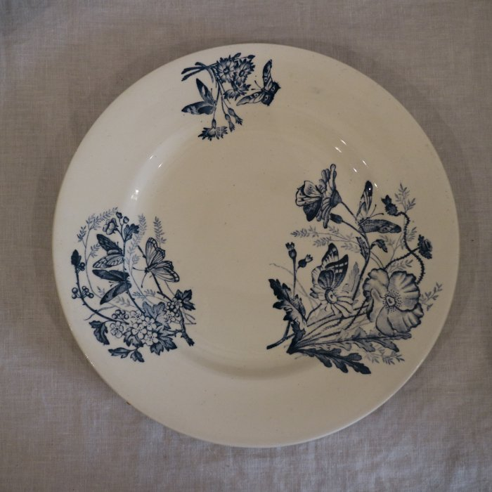 Antique アンティークディナープレート SALINS サラン Papillons