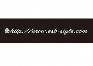 ■TCESBドメインステッカー w500 ※カラー別