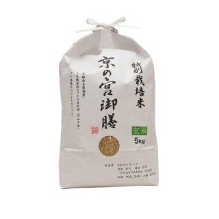 特別栽培米 京の宮御膳(玄米) 5kg 令和2年産 2020年産 【送料無料】