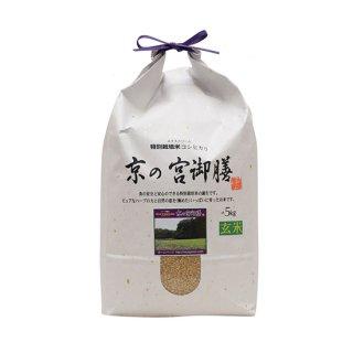 EXTREME 京の宮御膳【玄米】 5kg 令和2年産 2020年産 【送料無料】