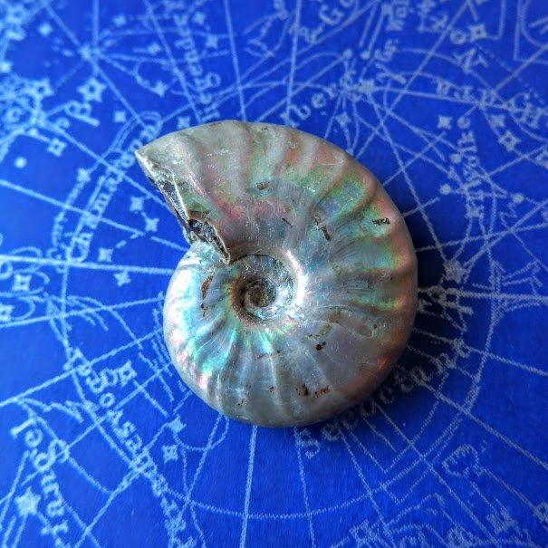 アンモナイト オパール化遊色 マダガスカル産 8.8g 化石