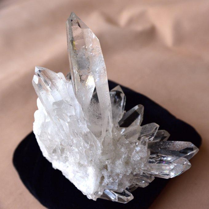 スターシード/スターブラリー・クォーツ 大星団 Zeca de Souza ブラジル・ミナスジェライス州産 306g/ クリスタル・クラスター水晶