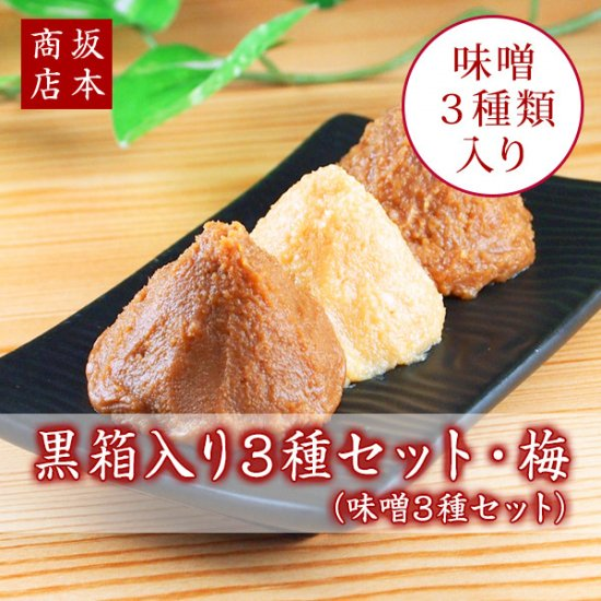 黒箱入り3種セット・梅(味噌3種)|送料無料