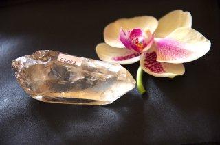 CL002  Crystalina Lemurian (Key, Time Link) 115g
