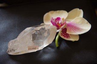 CL006  Crystalina Lemurian (Sprial Key) 125g