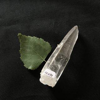 LS099a Original Lemurian (SeedsSteps)   51g 85mm