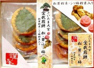 盆栽煎餅 松・茸(竹)・梅 10枚箱入り
